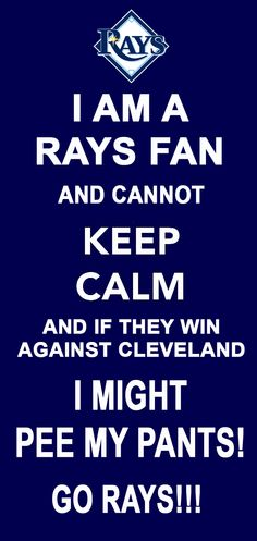 Tampa Bay Rays get me so excited! GO RAYS!