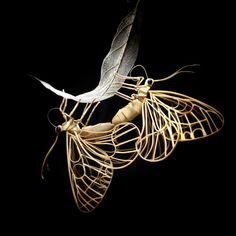 Japanese Artist Creates Incredibly Intricate Life-Size Insects From Bamboo, And The Result Will Impress You | Bored Panda