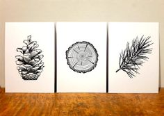 Prints - Pine Tree Set - 3 Pen and Ink illustrations - Nature art featuring pine log slice, pinecone, and pine branch by SnowlineArt on Etsy Tree Branch Tattoo, Pine Tree Tattoo, Tree Illustration, Ink Illustrations, Pinecone Tattoo, Pen Doodles, Tree Study, Tree Sketches, Tree Wall Art