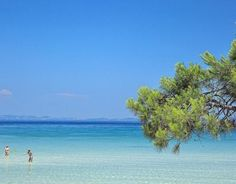 Karidi beach, Magical Halkidiki,Northern Greece ( I'm more used to THIS color of the sea , its crystal clear waters and soft white sands ) Dream Vacations, Vacation Spots, Mykonos, Santorini, Places To Travel, Places To See, Halkidiki Greece, Family Destinations, Crystal Clear Water