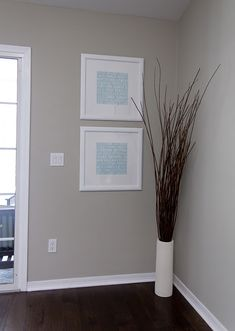 Valspar Bonsai and others colors on site Fam Room- Love the dark floor color and neutral walls and bright trim