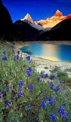 Cedros Alpamayo Trek, Cordillera Blanca, Huaraz Peru. Contact AndesCamp for prices and more info.