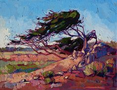 Monterey cypress tree painting by California impressionist Erin Hnason