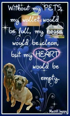 Without my pets, my wallet would be full, my house would be clean but my heart would be empty. #mastiff #englishmastiff #bigdog #gentlegiant #mastiff_happy #dog #dogquotes