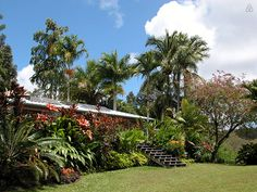 Hale Mohalu-Vacation Guesthouse - vacation rental in Pähoa, Hawaii. View more: #PhoaHawaiiVacationRentals
