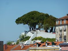 The Miradouro da Senhora do Monte In Lisbon is a great spot to watch the sun go down, or to get some shade during a hot sunny day. Europe Travel Tips, Us Travel, Top Site, Lisbon Portugal, Day Trips, Sunny Days, Night Life, Mansions, House Styles