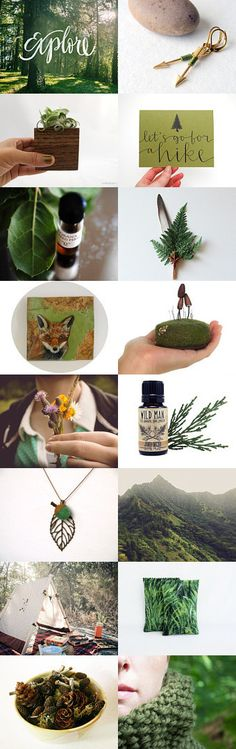 Let's Go For A Hike by Andrea Hurley on Etsy #woodland #MoodBoard