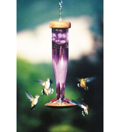 Our Amethyst Hummingbird Feeder is hHandcrafted in the USA from recycled redwood and kiln-fired, art-quality colored glass with an iridescent sheen that shimmers in sunlight. This beautiful, unetched hummingbird feeder will create a contemporary look to your outdoor garden setting.