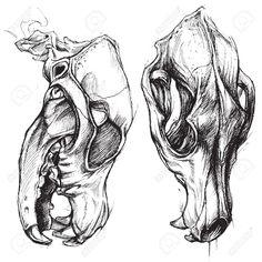 dog skull tattoo - Google Search