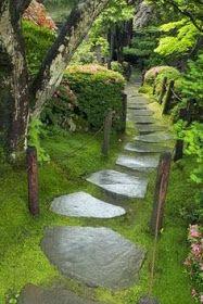 Beautiful path way