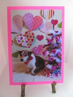 59 Best Valentine Pets Images Pets Cute Animals Love Pet