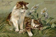Maurice Boulanger. Langage de fleurs - Marguerite. c1900.