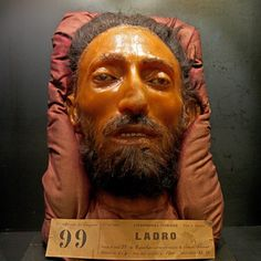The head of 19th century physician and psychiatrist Cesare Lombroso has been preserved in a glass chamber since his death in 1909. The former professor of forensic medicine's sleeping face is now displayed in the Museum of Criminal Anthropology in Turin, Italy, along with the wax-covered heads, brains, body parts and skulls of the soldiers, civilians and convicts whom he studied.