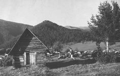 Old Photography, Cabin, Retro, House Styles, Pictures, Cabins, Cottage, Retro Illustration, Wooden Houses
