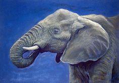 Matthew Ziranek, old website Artist Portfolio, Elephant, My Arts, Website, Illustration, Creative, Animals, Animaux, Illustrations