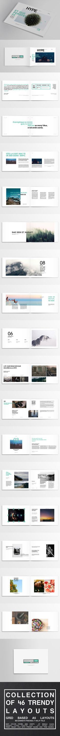 http://graphicriver.net/item/46-essential-trendy-layout-set-magazine-brochure/10978821
