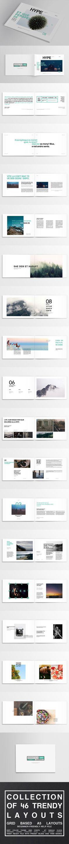 http://graphicriver.net/item/46-essential-trendy-layout-set-magazine-brochure/10978821