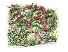 Perspective Drawings - Botanica Atlanta | Landscape Design-Build-Maintain