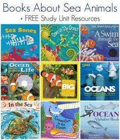 Children'S books about sea animals + free ocean animals study unit resources Animal Activities, Activities For Kids, Ocean Activities, Preschool Ideas, Best Toddler Books, Alphabet Book, Ocean Themes, Chapter Books, Children's Literature