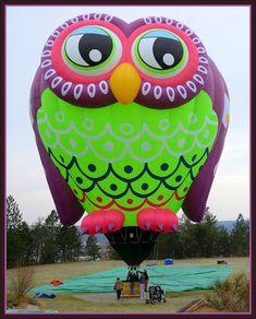 Vibrant colored owl balloon