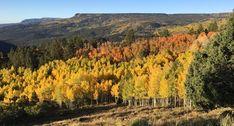 Amazing 2019 colorful autumn above Escalante Utah. Escalante Utah, Escalante National Monument, Grand Staircase, Wilderness, Acre, Colorful, Autumn, Explore, Amazing