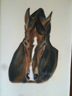 Horse ,equine , Pastell Artworks by MarikaSlickers