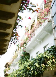 Lush Balconies in Cartagena Colombia | photography by http://www.sweetteaphotographybylisamarie.com/