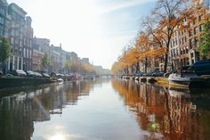 12 Dutch Experiences Every Visitor Should Have In Amsterdam
