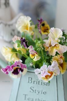Frilly Pansies: FLORETTA DIARY