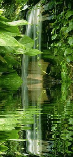 ¡ Maravillosa Naturaleza ! Creación de Dios . - Comunidad - Google+