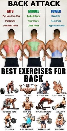 How to Lose Weight Without Exercising - Health Back Workout Routine, Good Back Workouts, Gym Workout Chart, Gym Workout Tips, Biceps Workout, Back Exercises, Fitness Workouts, Fun Workouts, Good Shoulder Exercises