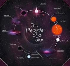 {CC Cycle 2, Week 7} The Lifecycle of a Star