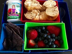 Dairy/Parve Lunch Ideas for Kosher Schools or Camps | The Mama Maven Blog