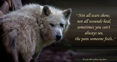 Let the wolves run free.WARRIOR KNOW THESE WORDS''''HE HAS SCARS THAT DONT SHOW AND NOT SURE WILL HEAL AND PAIN I JUST LIVE WITH'''''''''