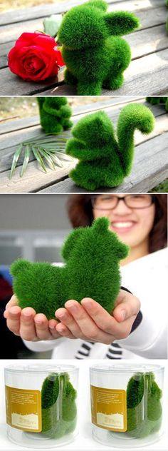 Artificial grass,little animals
