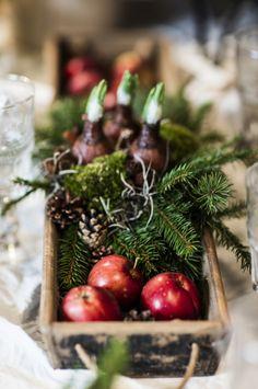 Äpplen i låda. Täck lådan med plast så att vattnet inte rinner ut på bordet. Lägg sedan på kuddmossa eller annan mossa, äpplen, kottar, träflisor och oasis. I oasisen kan du sticka ner bitar av gran eller tall och även sätta i hyacinter. Vill du dekorera yttligare kan du sätta i kanelstänglar eller torkade apelsinskivor. Ta vad du hittar och tycker är snyggt!