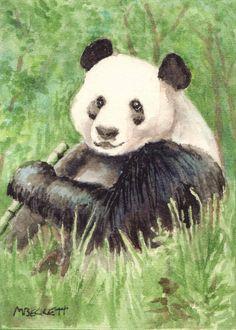 ACEO Original Panda Bear animals endangered wildlife China black white teddy #Impressionism