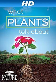 Nature: What Plants Talk About [HD] Amazon Instant Video ~ Nora Young, http://www.amazon.com/dp/B00LFF89WK/ref=cm_sw_r_pi_dp_vVTnub1NDC02D