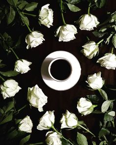 Good morning But first morning coffee surrounded by beautiful white roses. Have a lovely day #coffeetime #coffeeandseasons #coffeeshops #coffeeculture #coffeevibes #coffeesesh #coffeeloveandflowers #coffeegram #cupsinframes #coffeefeature #coffeeholic #coffee_inst #coffeexample #igerscoffee #storyonmytable #rose #morning #coffeeart #cups_are_love #cupsinframe #global_ladies #vscocoffee #rsa_vsco #tv_closeup #tv_living_nm2