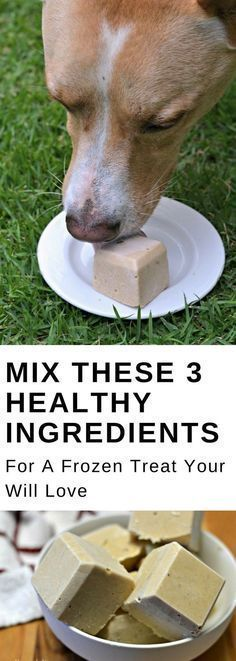 Mix these 3 ingredients for an easy, DIY, homemade dog treat that your pet will love. This frozen peanut butter and banana treat recipe will even keep your dog cool when it gets warm outside! #dogs #pets #puppies #dogtreats #dogtraining #dogfood #doghealth
