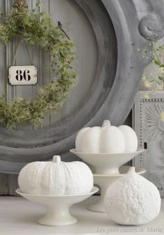 Fall Autumn ThanksGiving in Gray & White