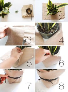Craftaholics Anonymous® | New decor for your home. Here is a leather tutorial to create art for your plants!