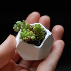 Make a simple miniature plant pot out of polymer clay.
