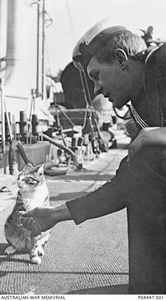 A sailor on board the Royal Australian Navy Destroyer HMAS Swan shaking the paw of Ching the ship's mascot cat.
