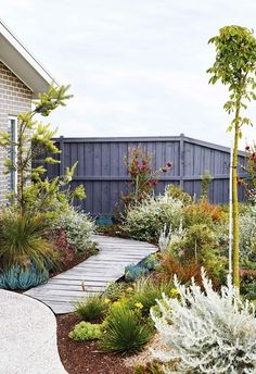 Sorting out a multi-level garden with beds sporting vibrant, low-growing plants has made this coastal patch in Torquay a standout. Australian garden An easy-care coastal garden in Torquay with colourful plants Back Gardens, Small Gardens, Outdoor Gardens, Australian Garden Design, Australian Native Garden, Coastal Gardens, Small Garden Design, Garden Cottage, Garden Care