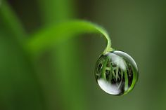 Water Drop Photography Tips   Mind-Boggling Water Drop Reflections (13 photos)