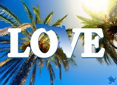Love Florida ☀  pinned by http://www.wfpblogs.com/category/florida-memes/