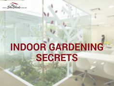 """Do you wonder why some people can take indoor gardening to new levels while you strain to keep a so-called """"bulletproof"""" houseplant alive? Here are five secrets that will green up your indoor landscape in no time. Read more>> https://goo.gl/Hg5iDI #IndoorGardening #Tipoftheday #WoodenShed #GardenSheds #GardenShedsAu #SheShedz #ShabbyChic #Cubbyhouse"""
