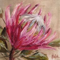 """""""Protea study daily painting by Heidi Shedlock Protea Art, Protea Flower, Art Floral, Guache, Oil Painting Abstract, Exotic Flowers, Acrylic Art, Botanical Art, Art Oil"""
