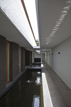 Gallery of Water-Cooled House / Wallflower Architecture + Design - 5